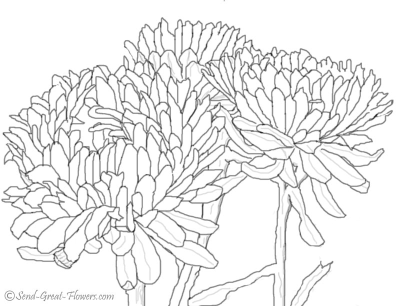 792x612 Autumn Coloring Pages