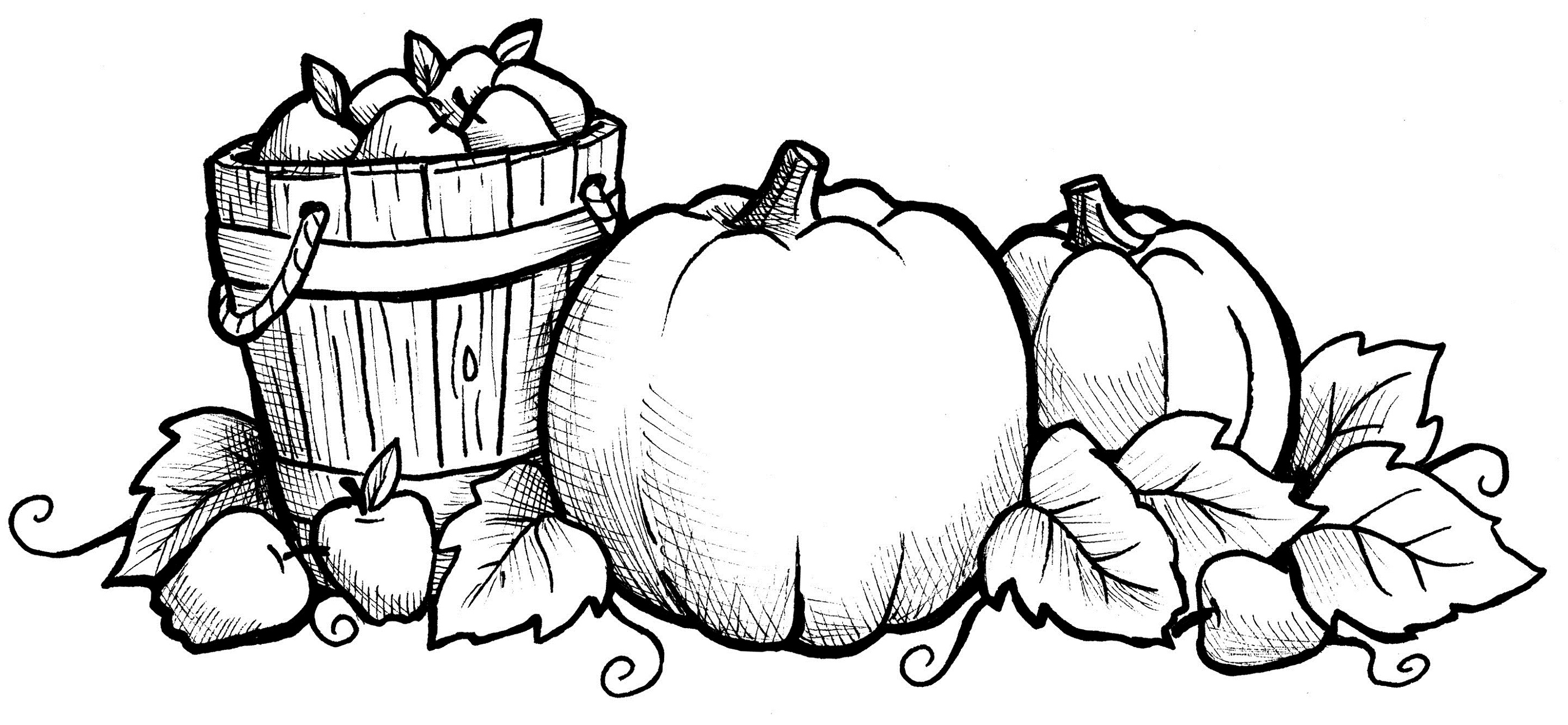2800x1295 Harvest Coloring Pages