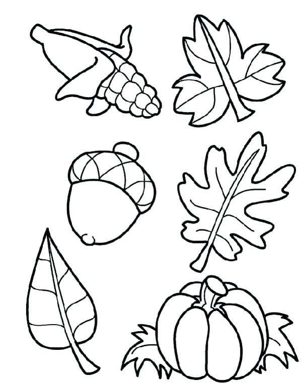 600x761 Autumn Coloring Pages Fall Harvest Coloring Pages Harvest Crops