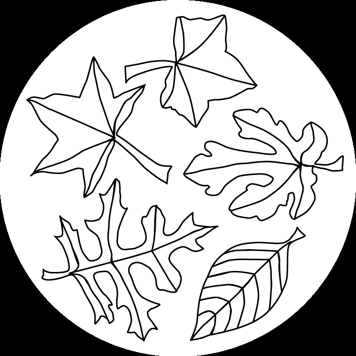 720x720 Fall Leaves Coloring Pages Unique Maple Leaves Clip Art Grayscale