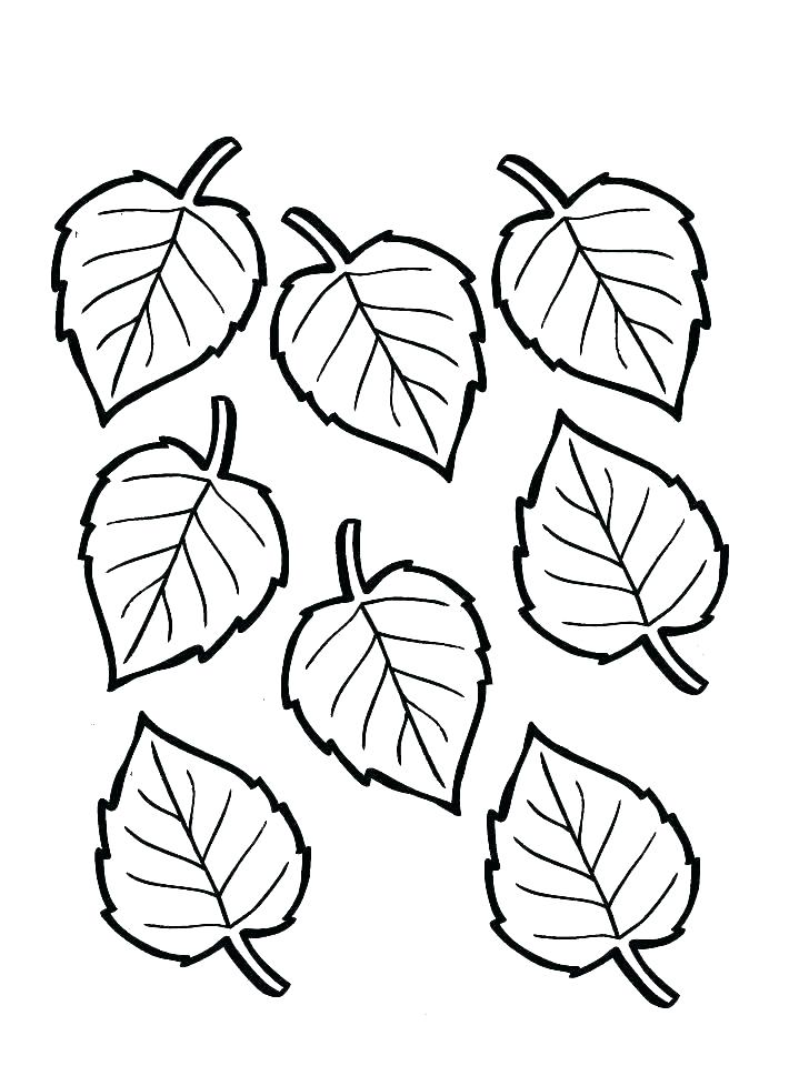 728x969 Free Printable Fall Leaf Coloring Pages Of A Best Coloring Book