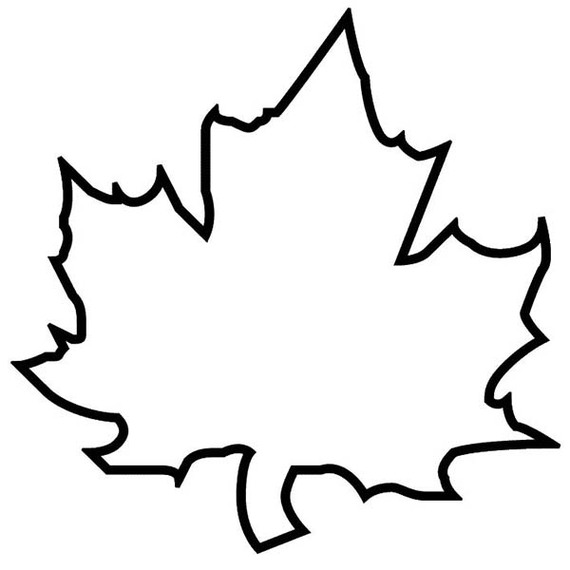 570x570 Helpful Fall Leaves Outline Maple Leaf
