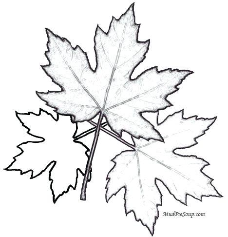 468x486 Autumn Leaf Coloring Page Coloring Pages Clip Art Etc Cute