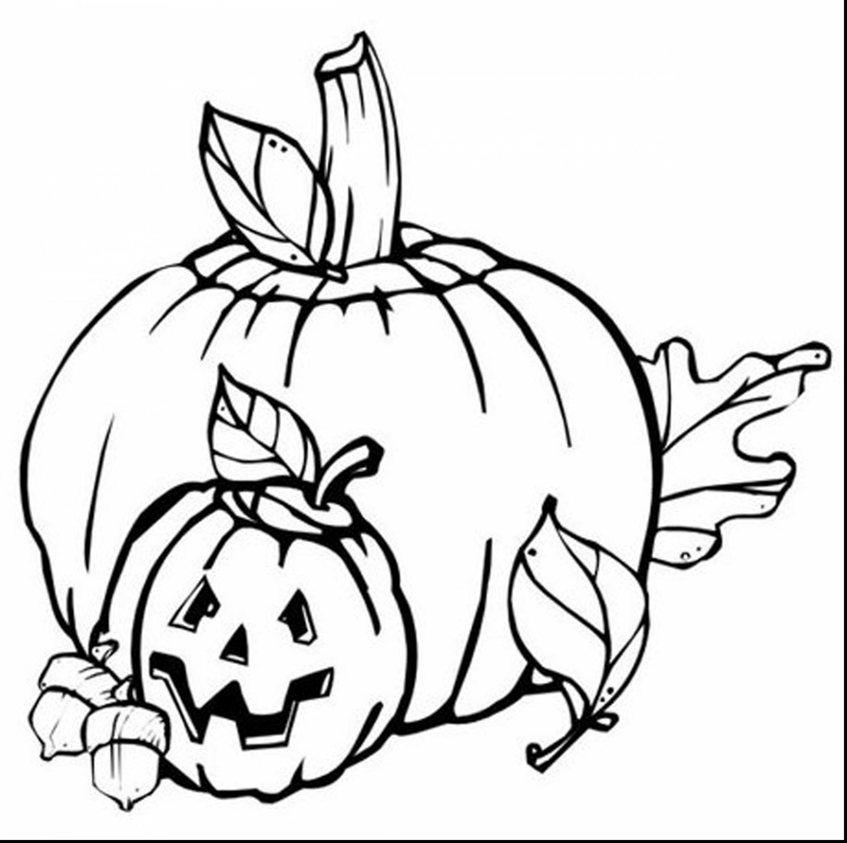 2805x2792 Special Fall Pumpkin Coloring Pages For Kids And Funny Squirrel