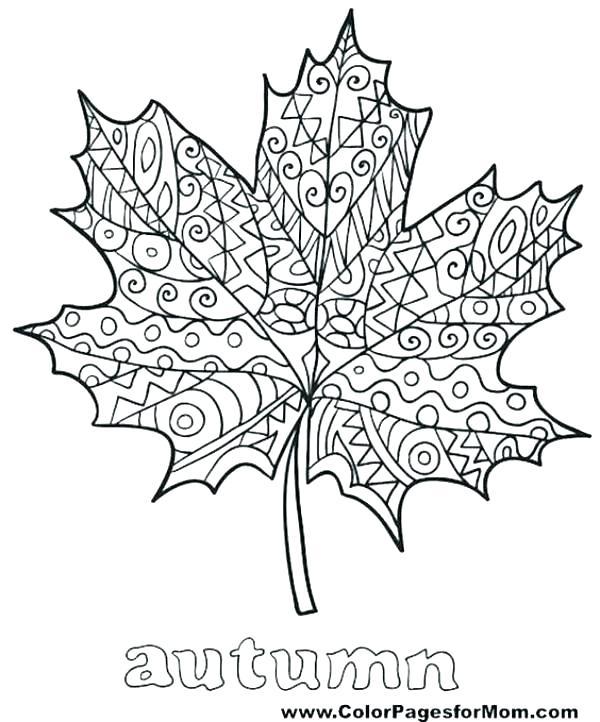 600x722 Fall Leaves Clip Art Coloring Pages Devon Creamteas
