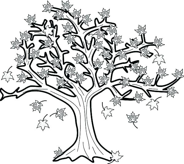 600x534 Leaves Coloring Pages Printable Deepart