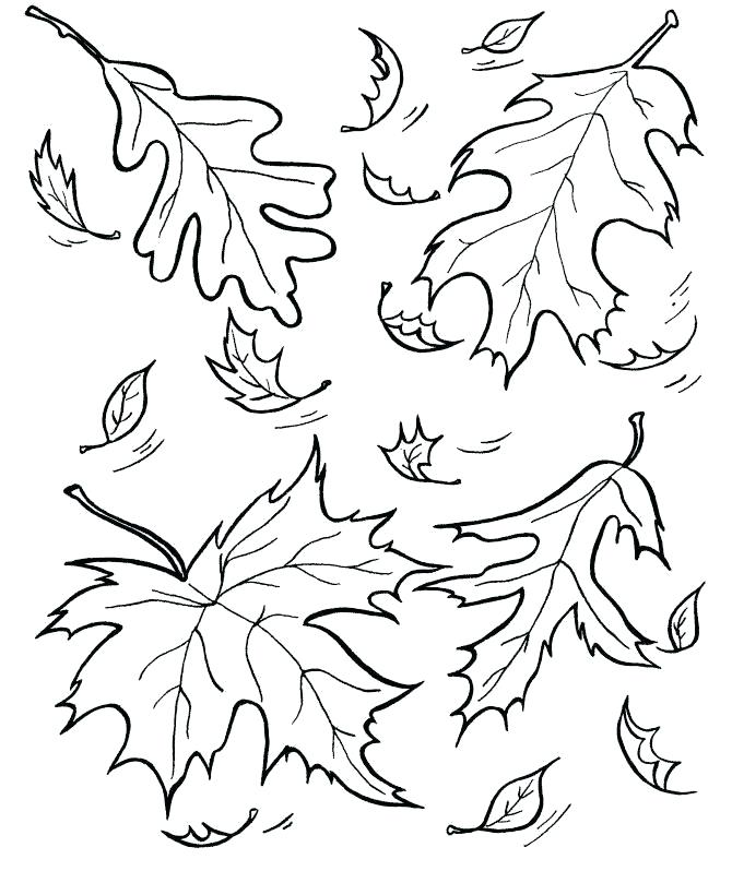 670x820 Fall Season Coloring Pages Fall Leaf Coloring Page Fall Season