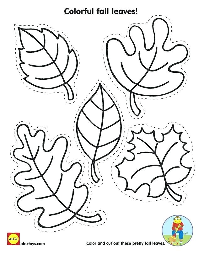 650x826 Falling Leaves Coloring Pages