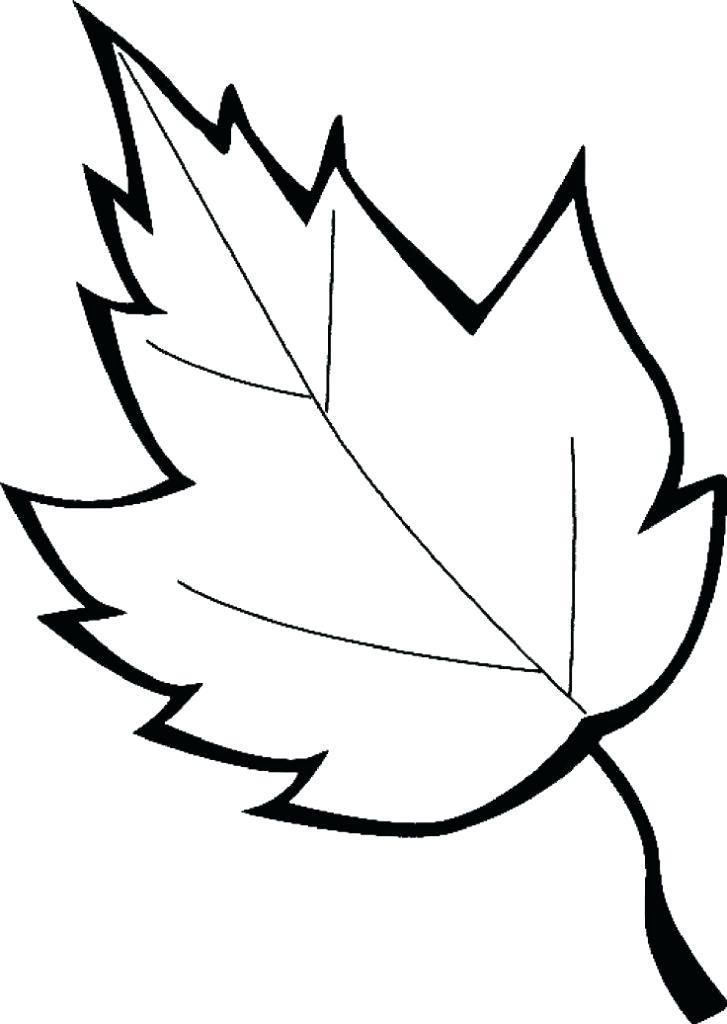727x1024 Printable Leaves Coloring Pages Leaves Coloring Pages Printable