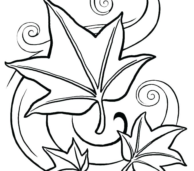 678x600 Pumpkin Leaves Coloring Pages Medium Size Of Fall Autumn Leaves