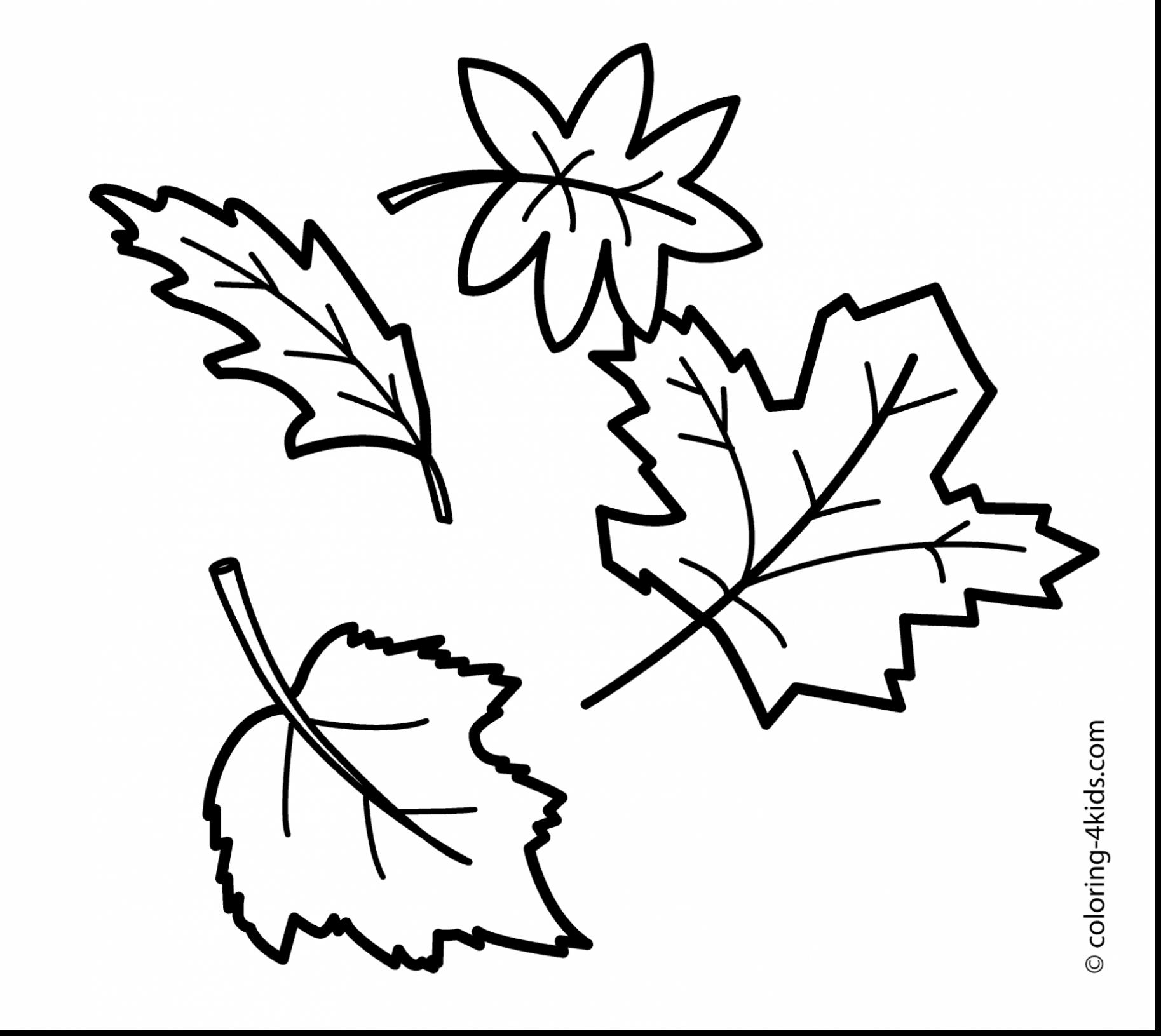 1827x1631 Revisited Fall Foliage Coloring Pages Compromise Leaf Pictures