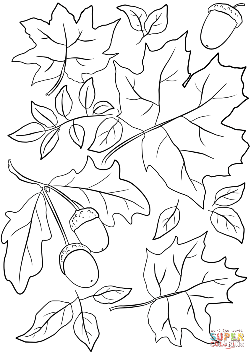 849x1200 Fall Leaves Coloring Pages Autumn And Acorns Page Free Printable