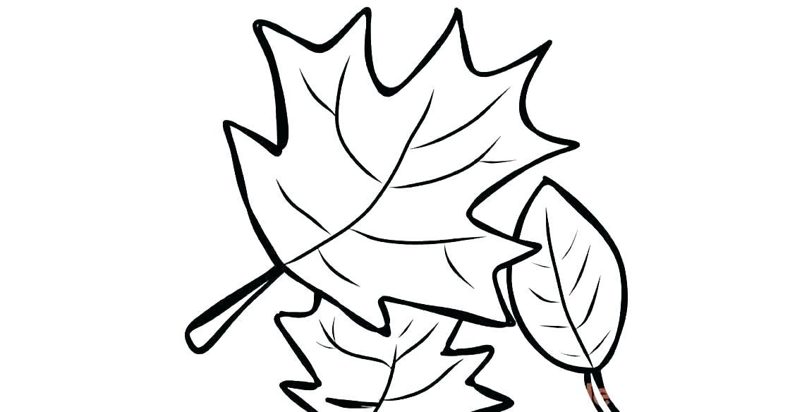 1120x584 Oak Leaf Coloring Page