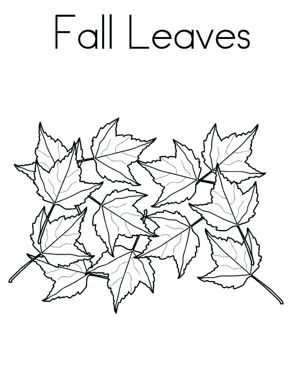 600x776 Coloring Pages Autumn Leaves Fall Autumn Coloring Pages Fall Leaf