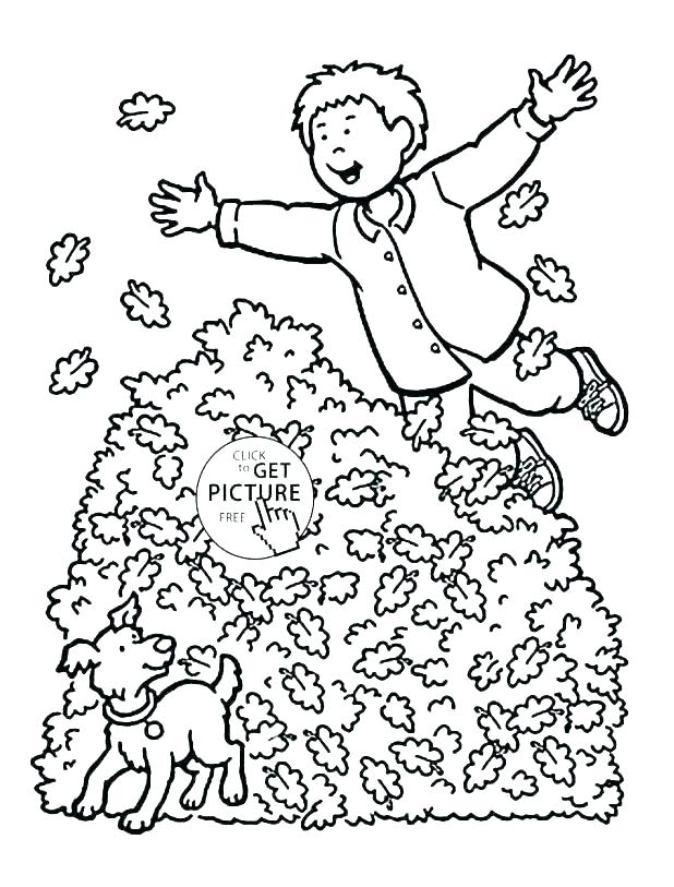 618x813 Autumn Coloring Pages Printable Leaves Coloring Pages Printable