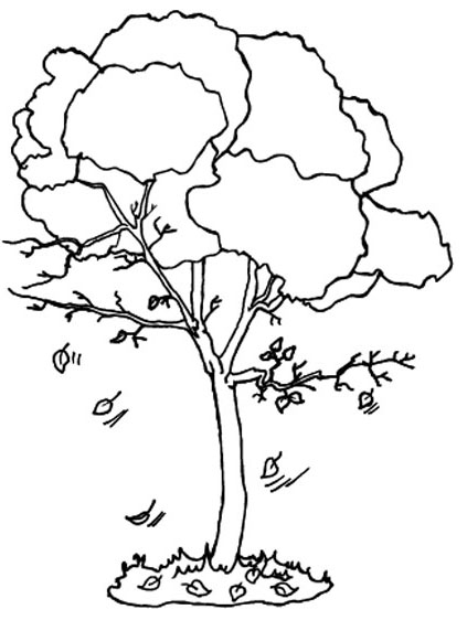 423x572 Fall Tree Coloring Pages