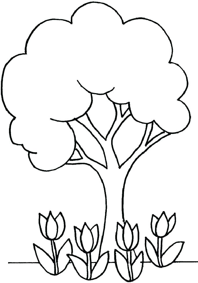 682x976 Tree Coloring Pages To Print Apple Page Together With Fall
