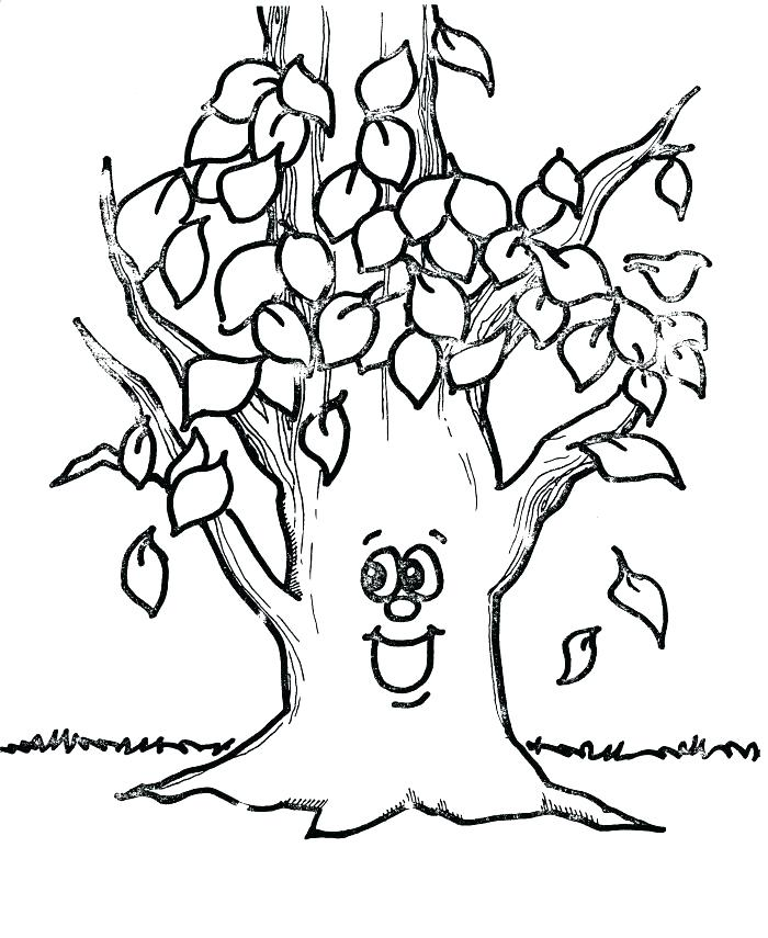700x855 Tree Without Leaves Coloring Page Leaves Coloring Pages Printable