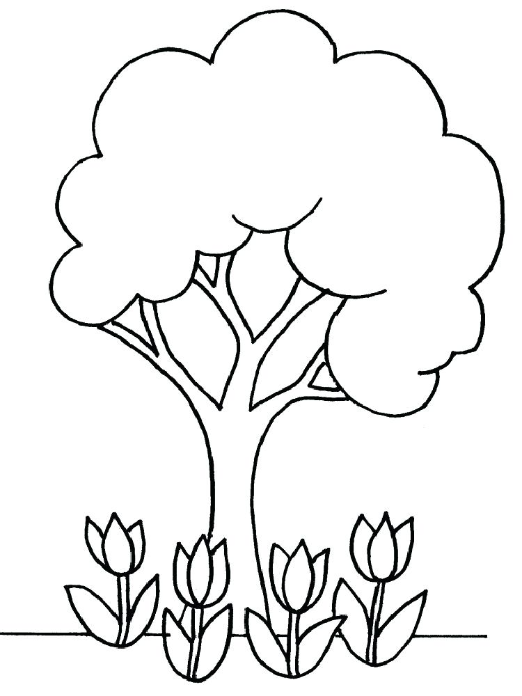 750x1000 Fall Tree Coloring Pages