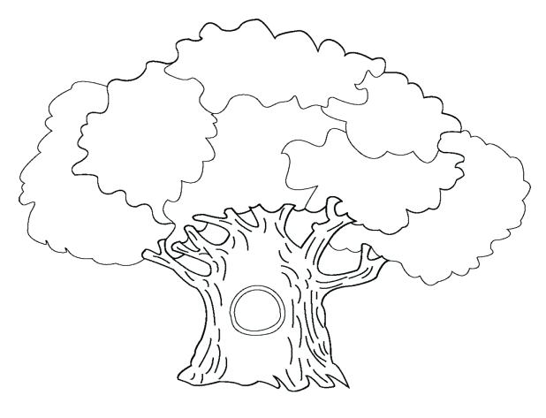 618x473 Bare Tree Coloring Page Together With Bare Tree Without Leaves