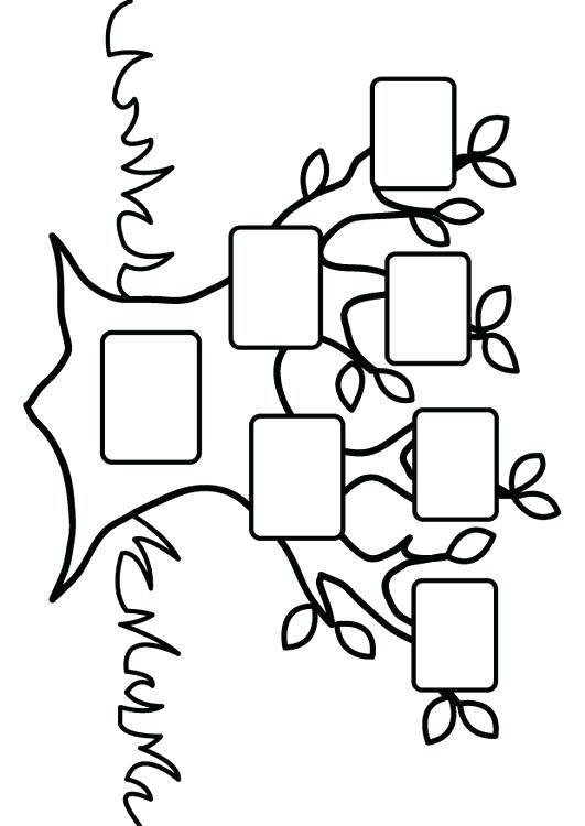 531x750 Family Tree Coloring Page Coloring Page Empty Family Tree Coloring