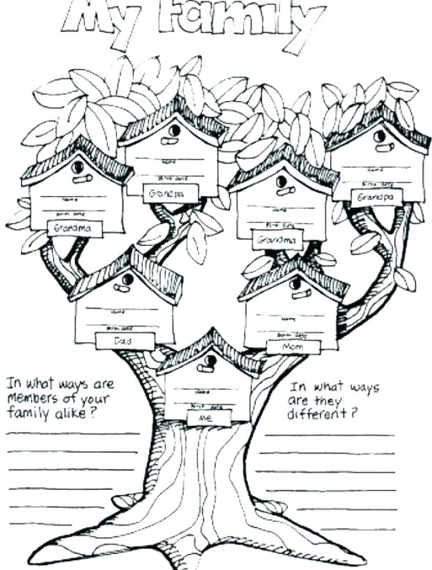 620x818 Family Tree Coloring Page Family Coloring Sheet Family Coloring