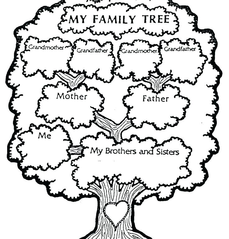 736x768 Family Tree Printables Family Tree Tree Tree Family Tree Worksheet