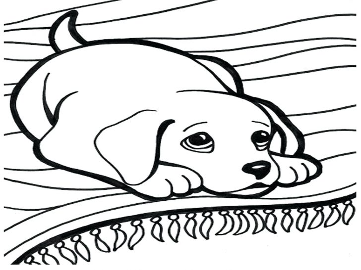 728x546 Rich Family Picnic Coloring Pages For Girls Dog The Sun Flower