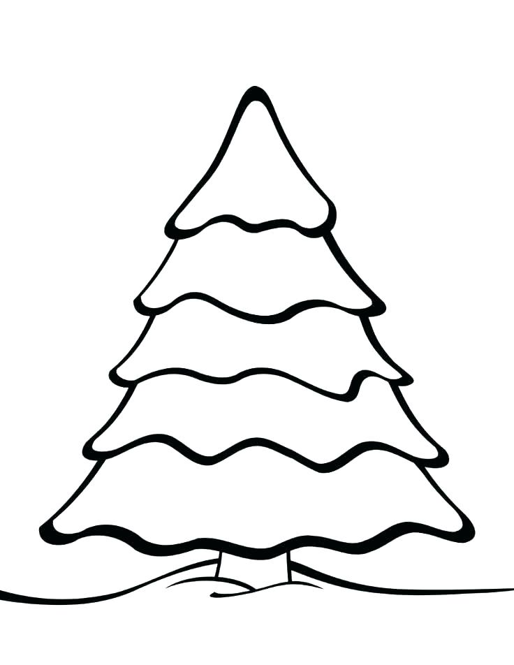 736x952 Coloring Page Of A Tree Unique Tree Coloring Page And Tree