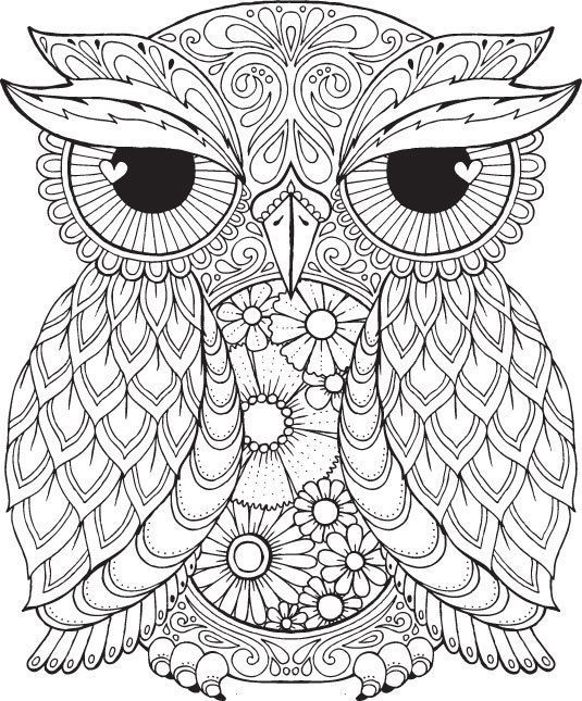 535x645 Coloring Pages Coloring Pages Of Owls For Adults