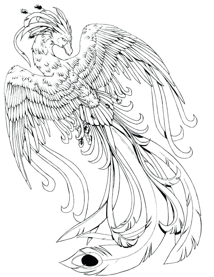 736x952 Mythical Coloring Pages To Print Mythological Creatures Creature
