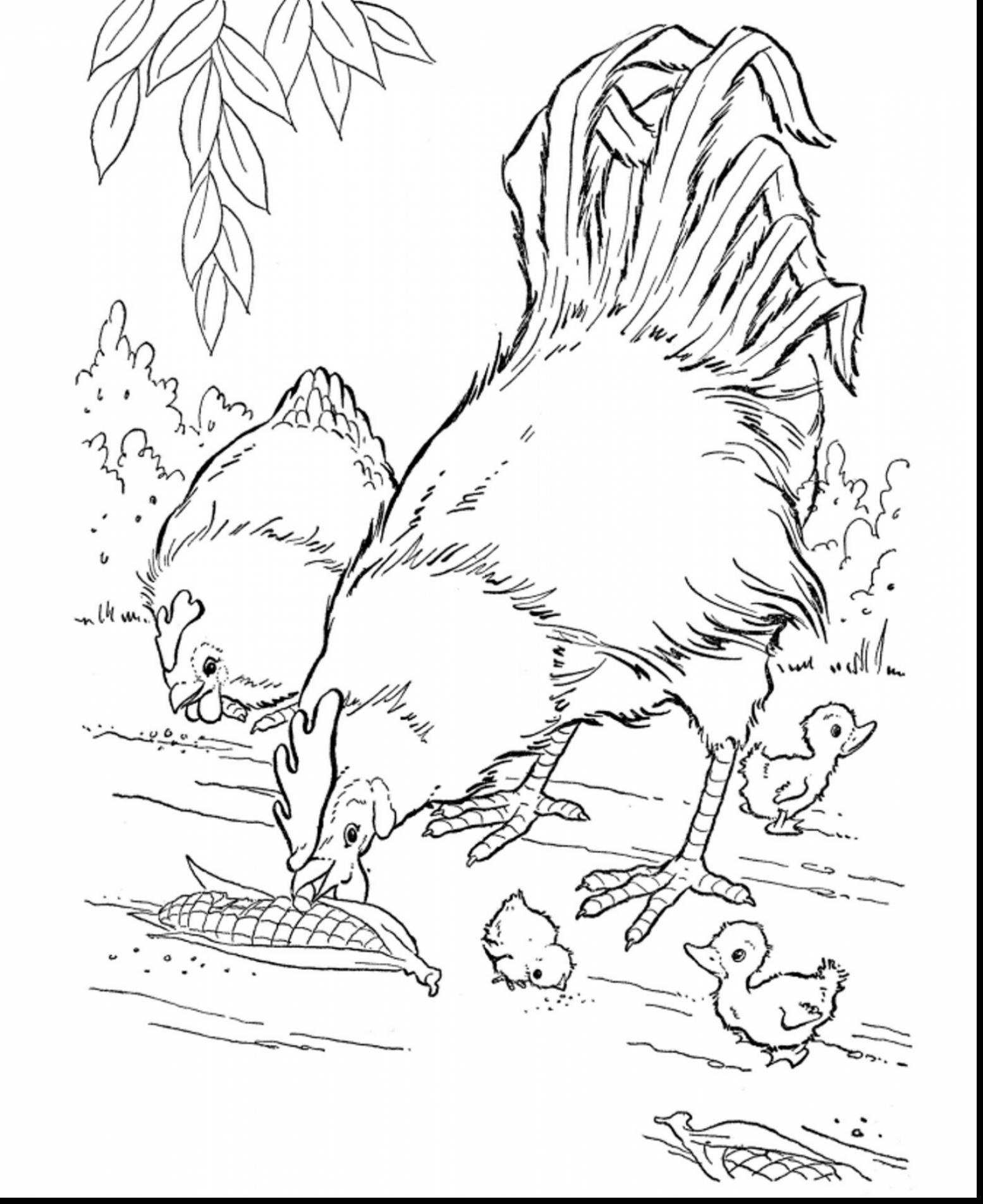 Farm Coloring Pages For Adults at GetDrawings.com | Free for ...