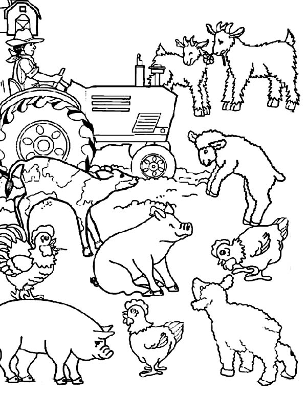 600x776 Coloring Page Farm Animals