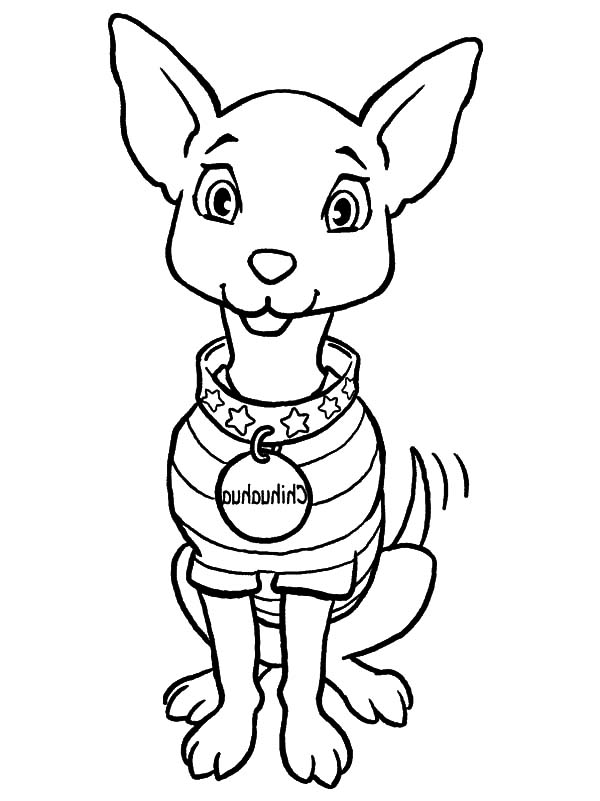 600x801 Chihuahua Dog Fashion Show Coloring Pages