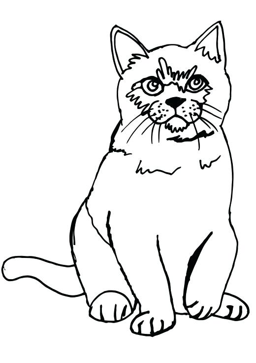 520x736 Best Of Printable Cat Coloring Pages Images Cat Sitting Coloring