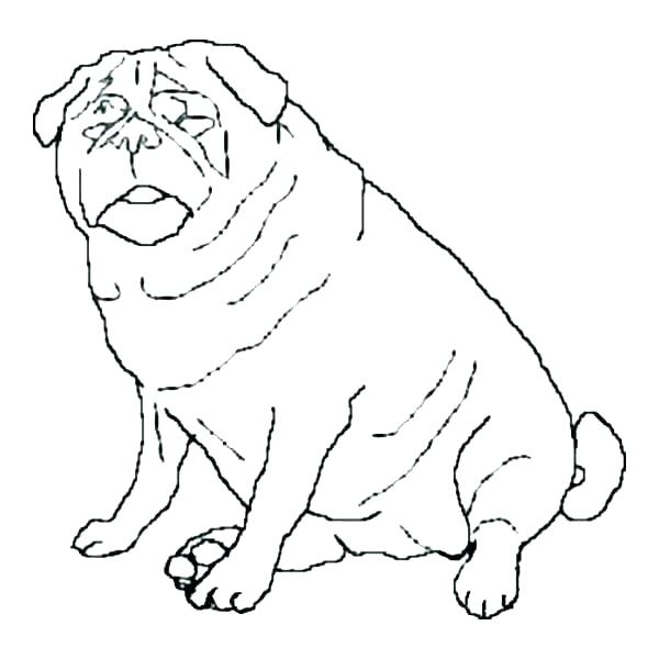 600x600 Pug Coloring Pages Pug Colouring Pages Printable Coloring Cute