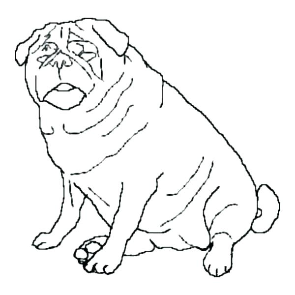 600x600 Pug Coloring Pages And Fat Dog Page Colorin Murs