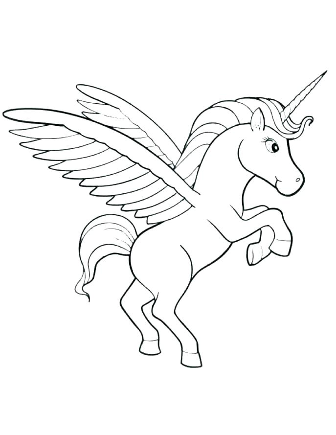 687x889 Narwhal Coloring Page Cute Unicorn Coloring Pages Printable As