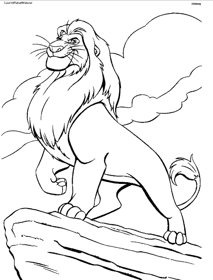 725x953 Lion Coloring Pages Printable