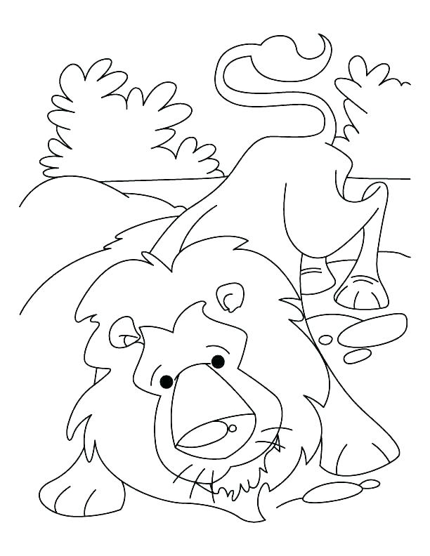 612x792 Lion Face Coloring Page Images About Coloring Pages On Coloring
