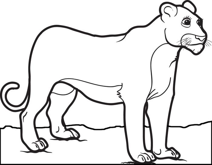 700x545 Best Female Lion Coloring Pages Free Printable