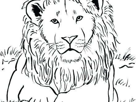 440x330 Coloring Pages Lions Female Lion Coloring Page Free Printable