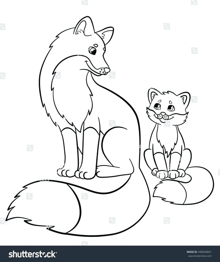 750x894 Baby Fox Coloring Pages Fox Picture Of Fox Coloring Pages Baby