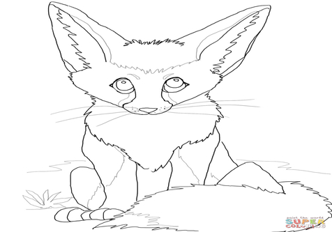 476x333 Bat Eared Fox Coloring Pages Cute Fennec Page