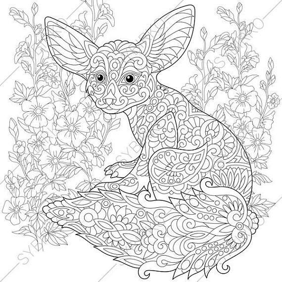 570x570 Fennec Fox Mallow Flowers Coloring Pages Animal Coloring Book