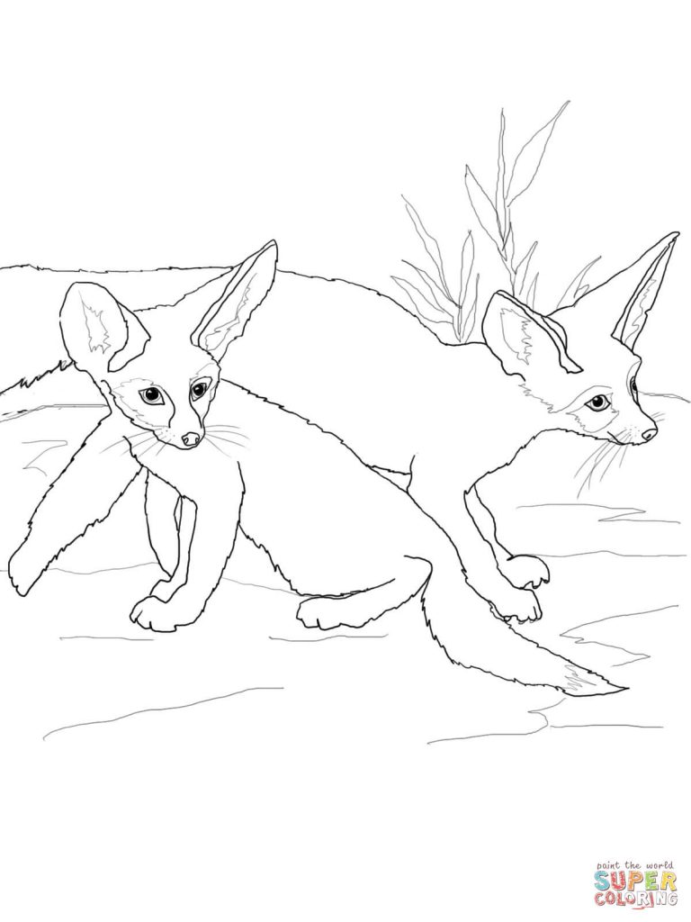 768x1024 Greatest Fennec Fox Coloring Page Babies