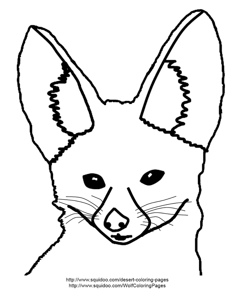 817x1024 Fennec Fox Coloring Page Fennec Fox Coloring Page Adapted