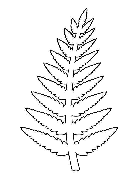 Fern Coloring Page