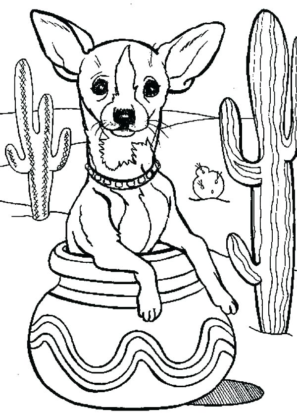 600x837 Fiesta Coloring Pages New Chihuahua Coloring Pages Best Of Cactus