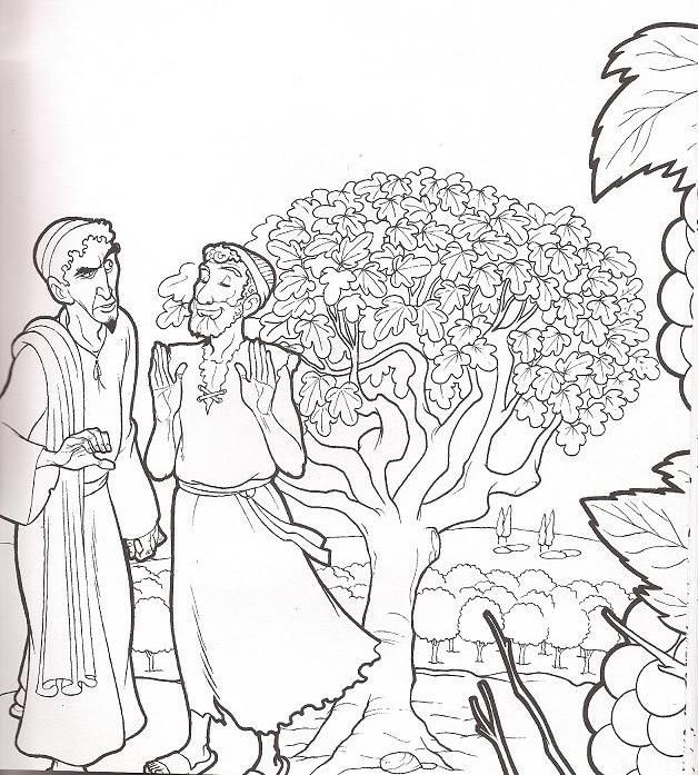 The Best Free Fig Coloring Page Images Download From 41 Free